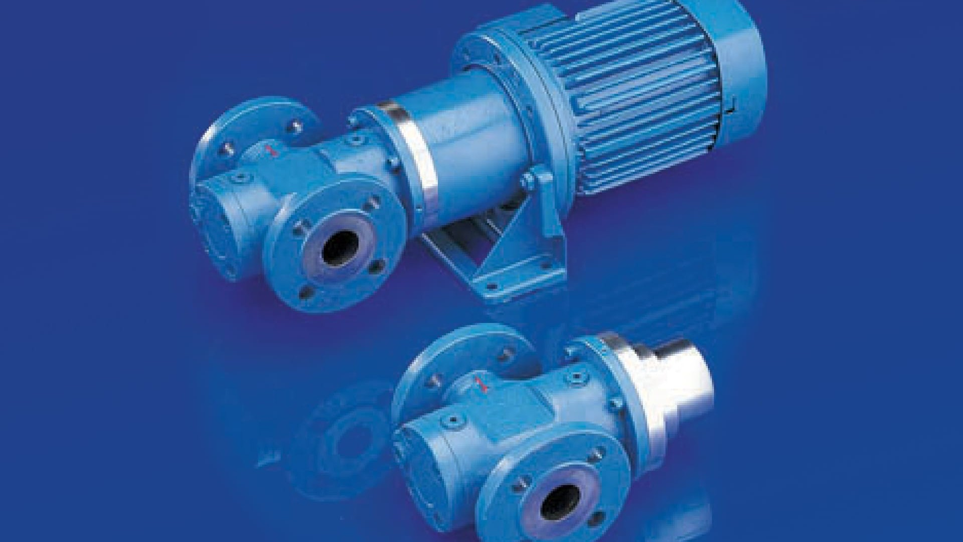 Magnetic coupled, hermetically enclosed screw pumps